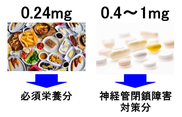 食事の0.24mg/日は必須栄養分、サプリの0.4~1mg/日は神経管閉鎖障害対策分