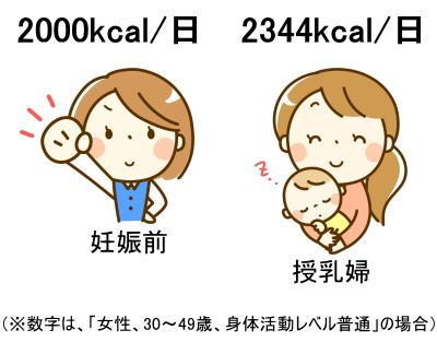 妊娠前の女性の必要カロリーは2000kcal/日、授乳婦の必要カロリーは2344kcal/日であることを説明するイラスト