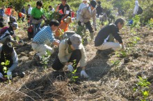 植林のボランティアで自分を変える