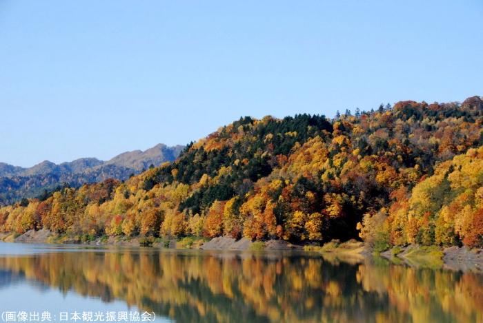 桂沢湖畔の紅葉