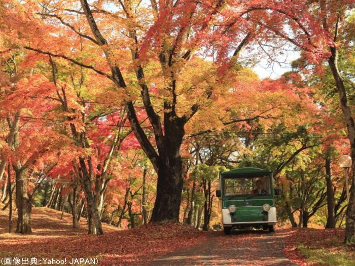 プリンスグランドリゾート軽井沢の紅葉