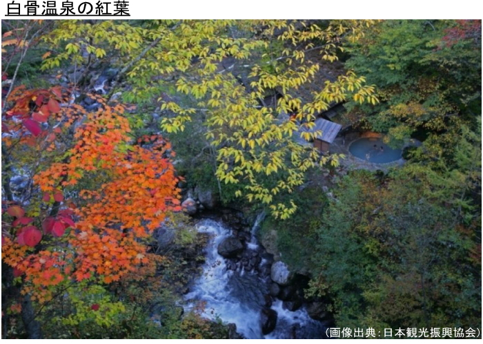 白骨温泉の紅葉