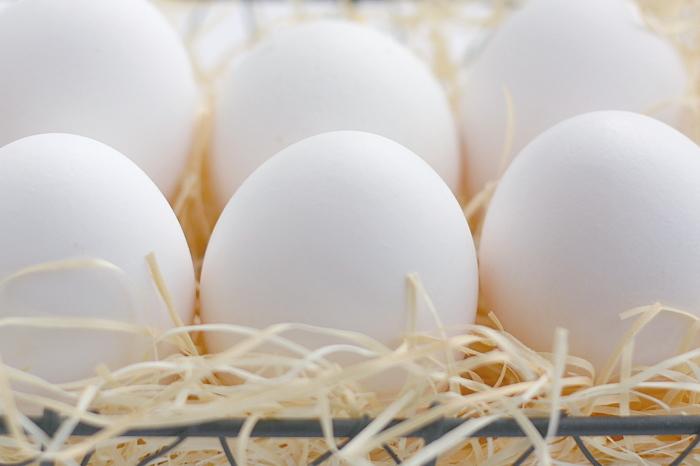 コレステロール含有量の多い卵