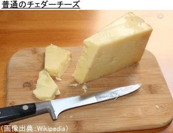 普通のチェダーチーズ