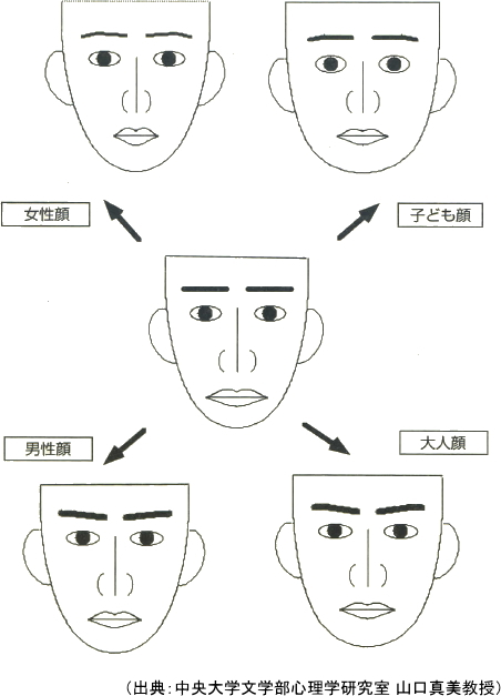 コンピューターソフトで作り替えられた顔の平均