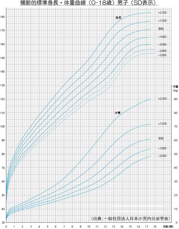 横断的標準成長曲線(男子)