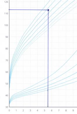 男子の標準身長曲線に、「5歳6ヵ月、113cm」の所に印