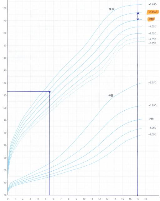 男子の標準身長曲線の「17歳の平均~+1.0SDのグループ」の所に印