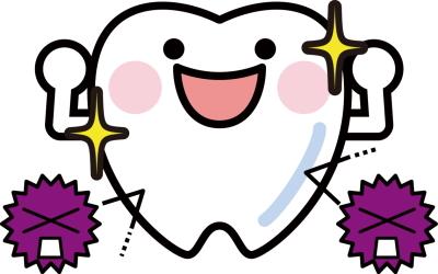 虫歯の無いきれいな歯
